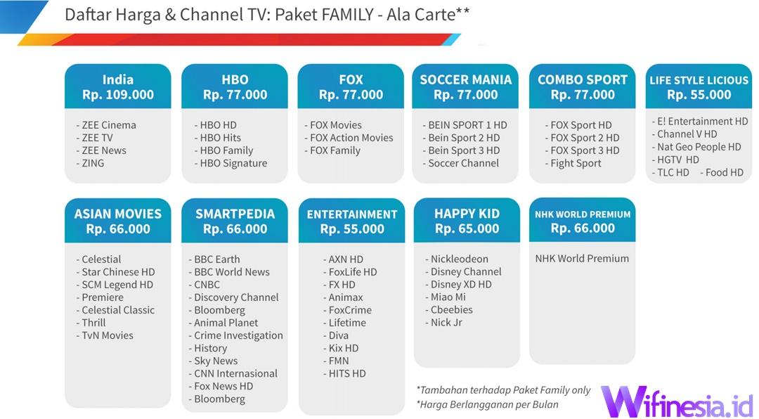 Harga Paket Addon TV Berlangganan PLN Stroomnet Icon+